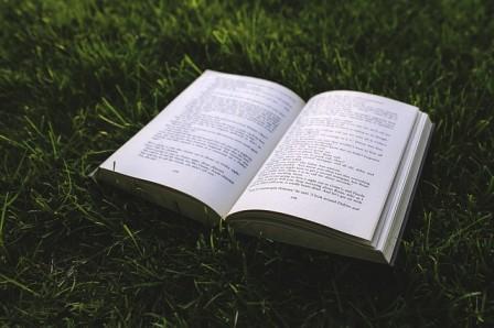 Bücher Natur