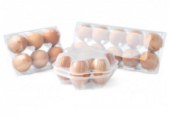 Eierschachteln PET
