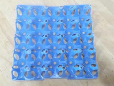 Eierhöcker für 20 grosse Eier, blau