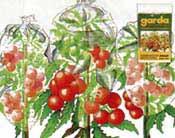 Reifehauben für Tomaten
