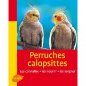 Perruches Calopsittes