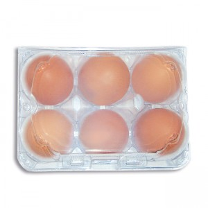 6er PET Eierverpackung div. Stückzahlen