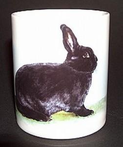 Kaninchenmotive A - G