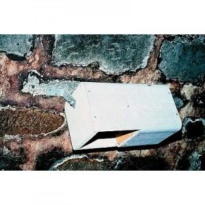 Bachstelzen-/Wasseramselkasten Nr. 19