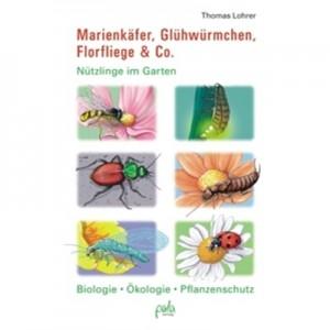Marienkäfer, Glühwürmchen, Florfliege & Co