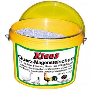 Magensteinchen (Quarz)