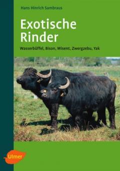 Exotische Rinder