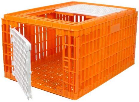 Geflügeltransportkiste HOCH orange 77x58x42cm