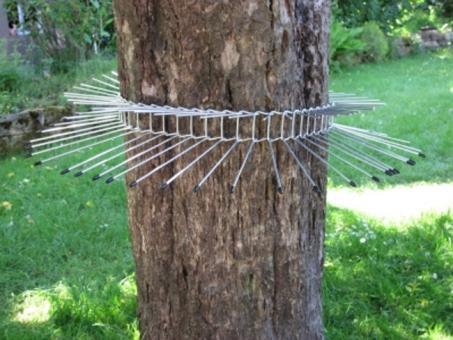 Katzenabwehrgürtel 70 cm