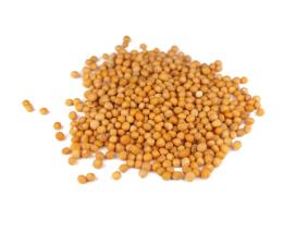 Senfkörner gelb 200g
