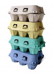 fieger ag 146x 6er eierschachteln f r h hnereier online kaufen. Black Bedroom Furniture Sets. Home Design Ideas