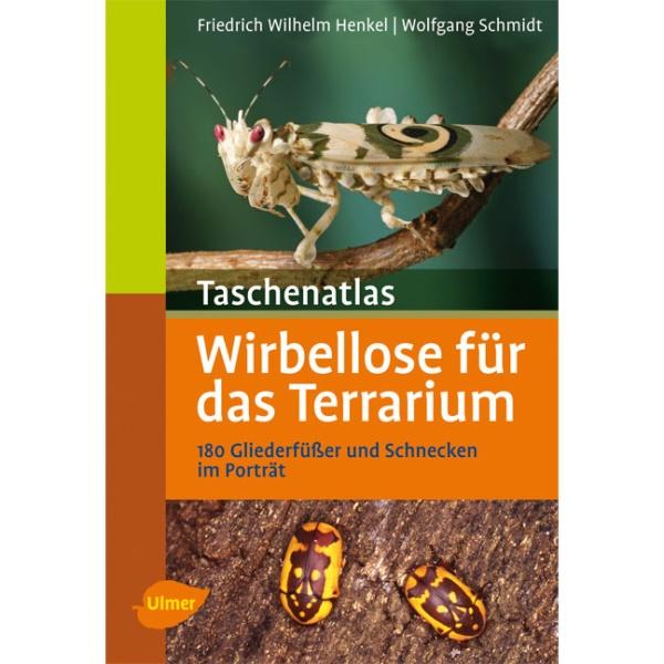 Termiten Im Haus: Taschenatlas Wirbellose Für Das Terrarium